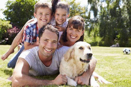 What is the Difference Between Group Term Life Insurance and Term Life Insurance?