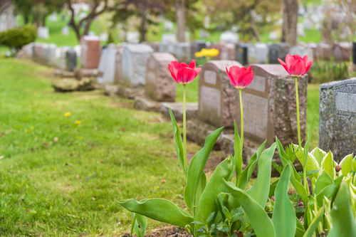 Burial Insurance Benefits